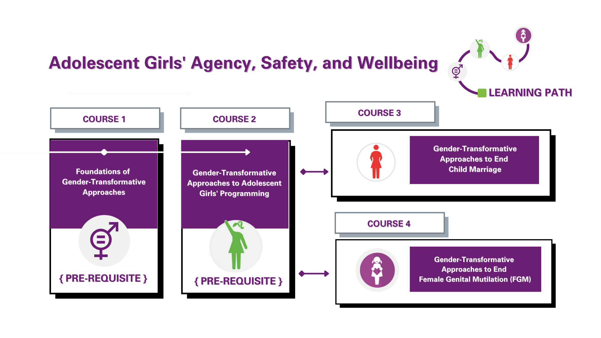 The Adolescent Girls' Agency, Safety and Wellbeing learning path